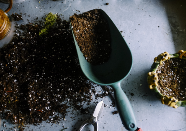Top Tips For Improving Garden Soil from Two Green Shoots
