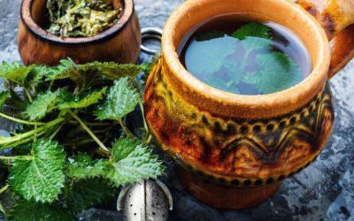 HOW TO VIDEO:  Springtime Wild Teas